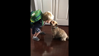 Kid kisses his dog goodbye before daycare - Video