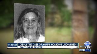 Discovery of dead dogs inside woman's home leads to removal of nearly 3 dozen animals - Video