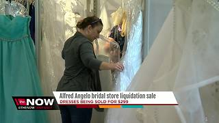 Alfred Angelo bridal shop reopens for liquidation - Video