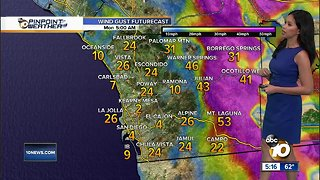 10News Pinpoint Weather for Sun. Jan. 20, 2019