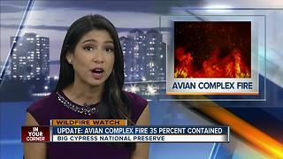 Avian Complex Fire 35 Percent Contained - Video