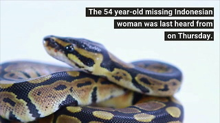 23-foot Python Swallows Woman Whole