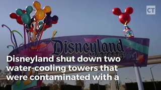 Outbreak at Disneyland - Video