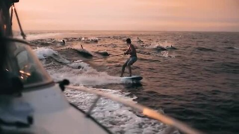 Pod of dolphins join wakeboarder under majestic sunset in epic slow motion