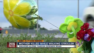 Mother killed while walking along Tarpon Springs Road