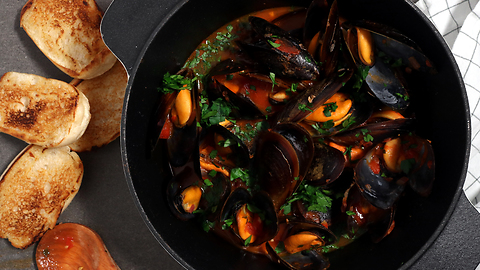 Mussels in tomato sauce with white wine broth