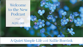 A Quiet Simple Life with Sallie Borrink - Welcome to the Podcast!