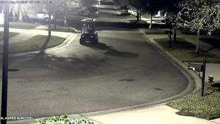 Deputies searching for golf cart porch pirates in Hillsborough County - Video