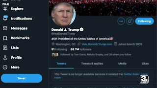 Power of social media on display after platforms ban President Trump