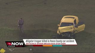 Alligator trapper killed in crash in Pasco Co. - Video