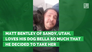 Dog Covered with Scabs Found in Middle of Desert, Body Nothing but Skin and Bones - Video