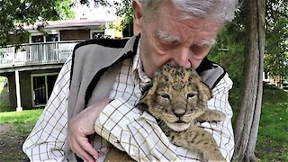Hero war veteran cuddles with a baby lion cub