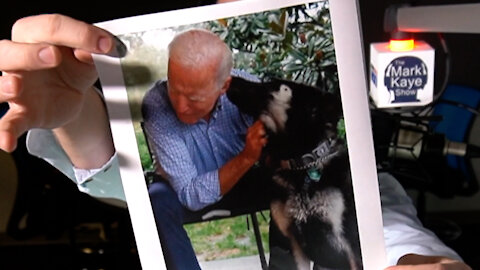 WILL JOE BIDEN PUT HIS DOG IN THE CABINET?!