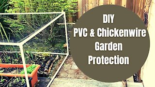 DIY Garden Project | Easy Project to Protect Garden
