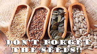 Seed Banks ~ One of the Most important Preps!