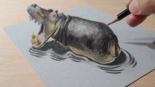 How to draw a 3D hippo - Video