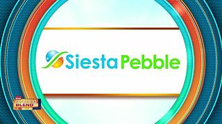 Siesta Pebble: Breathing New Life Into Your Backyard Aquatics - Video