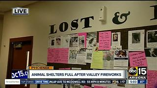 Animal shelters busy after Valley fireworks - Video