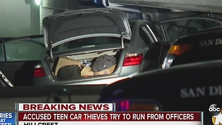 Accused teen car thieves try to run from officers - Video