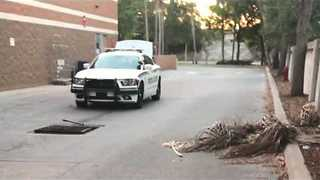 Ducklings Rescued From a Drain in Florida - Video