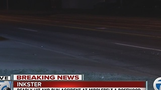 Deadly hit-and-run accident in Inkster