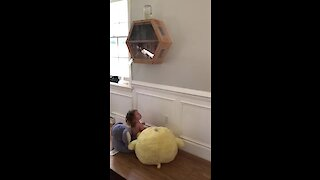 Baby girl fascinated by wall-mounted glass beehive
