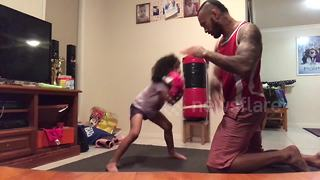 Witness the incredible power of this four-year-old boxer - Video