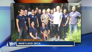 Maryland SPCA says good morning