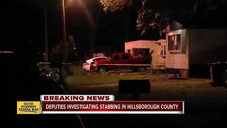 Deputies investigating stabbing in Hillsborough County - Video