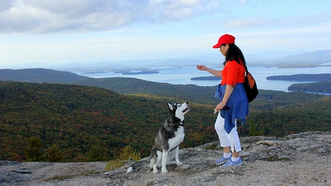 Husky's unforgettable trip to the top of Mount Major