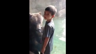 Little boy and bear play together