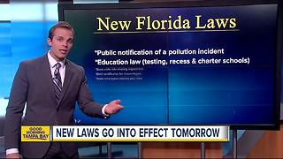 New laws that go into effect on July 1 in Florida - Video