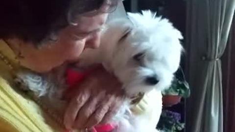 Emotional 90-Year-Old Grandmother Has Priceless Reaction To Puppy Surprise
