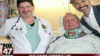 Dog hailed hero for saving owner's life - Video