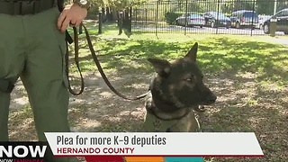 Plea for more K-9 deputies - Video