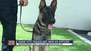 Dade City Police get new K9 officer - Video