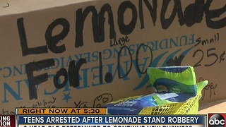 9-year-olds robbed at lemonade stand in Lutz - Video