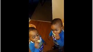 Adorable Twins Try Lemon For The First Time And It's Hilarious - Video