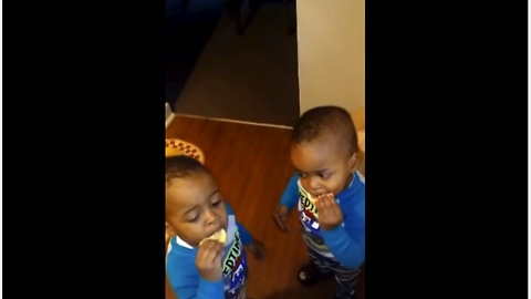 Adorable Twins Try Lemon For The First Time And It's Hilarious