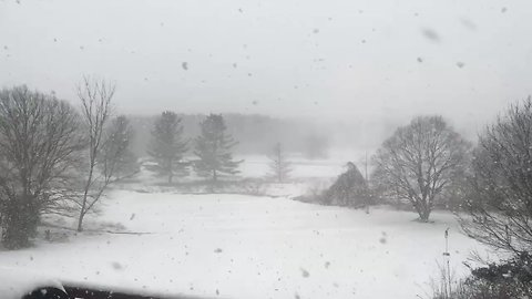 Snow Squall Causes Whiteout Conditions in Maryland