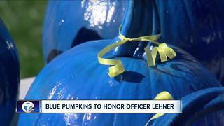 Blue pumpkins in big demand after officer's death - Video