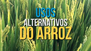 Os Incríveis Usos Alternativos do Arroz - Video