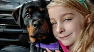 Seven-year old girl trains puppy herself