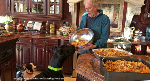 Great Danes help make Canadian Christmas snacks