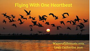 Flying with One Heartbeat