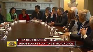 Judge blocks President Trump's decision to end DACA program for young immigrants facing deportation - Video
