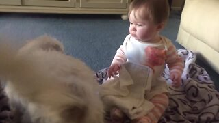 Puppy and Baby Love Each Other!