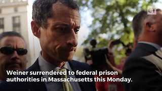 Anthony Weiner Goes to Prison - Video