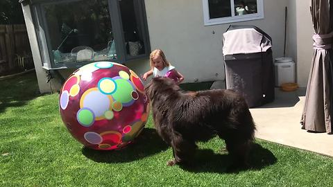 Little girl makes backyard obstacle course for her dog