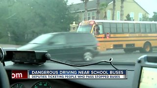 Hillsborough deputies cracking down on drivers who pass stopped school buses on U.S. 41 | Driving Tampa Bay Forward - Video